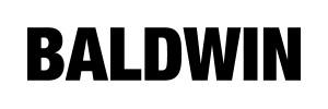Baldwin Denim Logo Rectangle