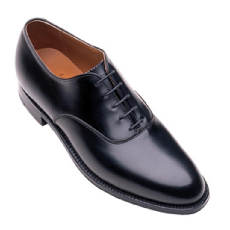 Alden - Dress Shoes - plain toe bal oxford