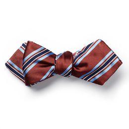allen edmonds stripe bow tie by carrot & gibbs